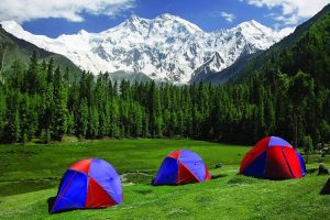 fairy-meadows